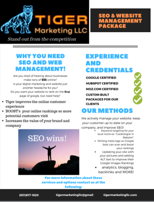 tiger marketing llc, seo package, seo,  website management, tiger marketing, digital marketing